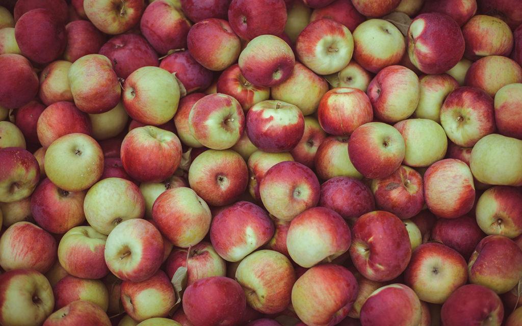 Брага из яблок